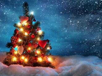 /Files/images/c3363a35be0677f72e3ff15949997d55_beautiful_christmas_tree_1280x800.jpg